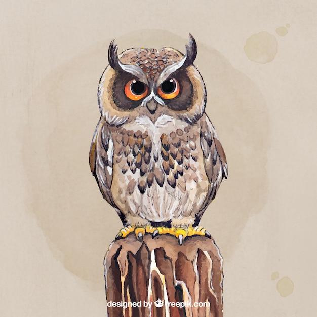 Beautiful hand drawn owl Free Vector