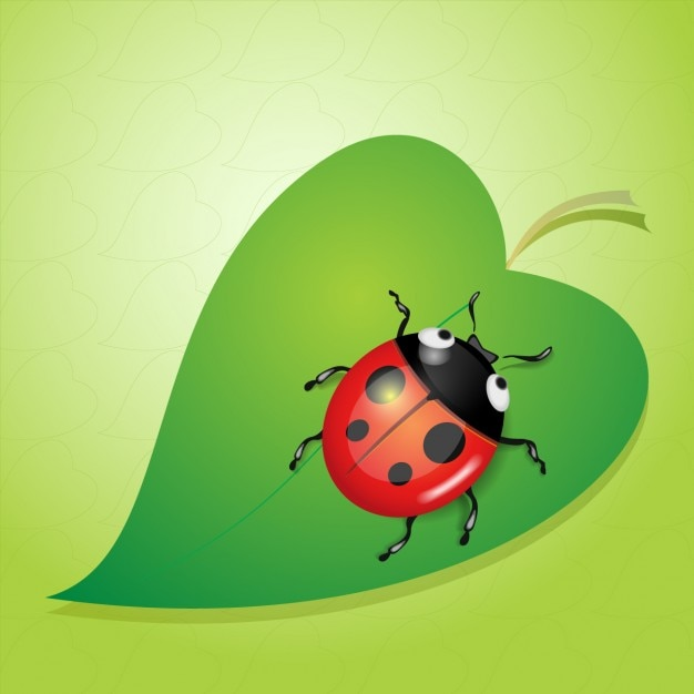 Beautiful ladybug in a leaf vector free download
