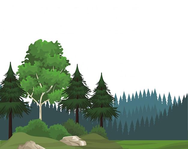Beautiful landscape scenery Premium Vector