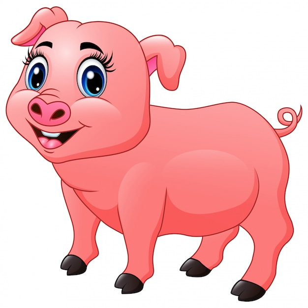Beautiful little pig cartoon Premium Vector