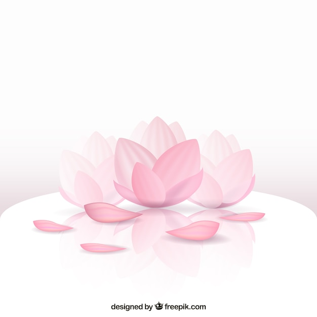 Beautiful Lotus Flower Vector Free Download