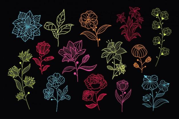 Красивые неоновые рисованной цветочные векторных коллекции Premium векторы