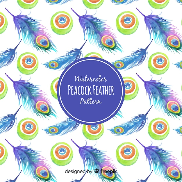 Beautiful peacock feather pattern Free Vector