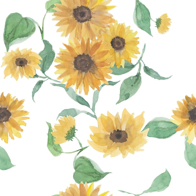 Beautiful seamless pattern with sunflowers and leaf on white. Premium Vector
