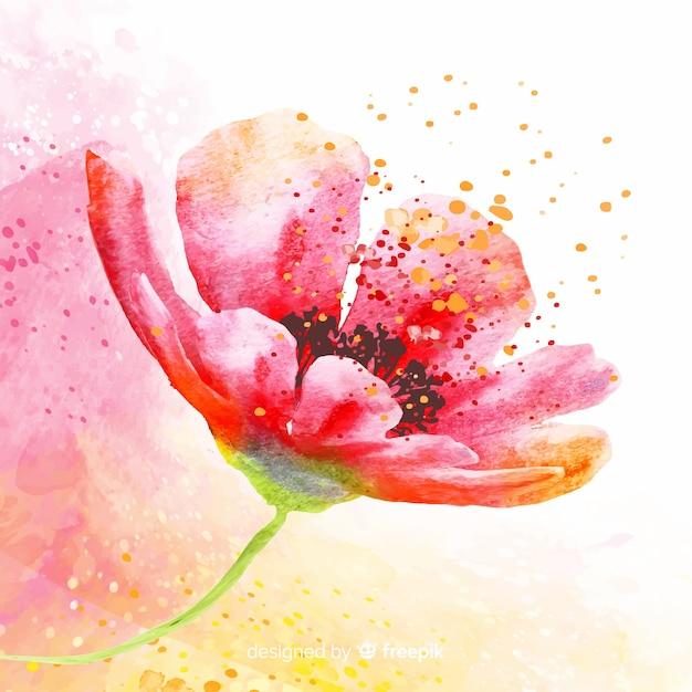 Красивый боком цветок с пыльцой Бесплатные векторы