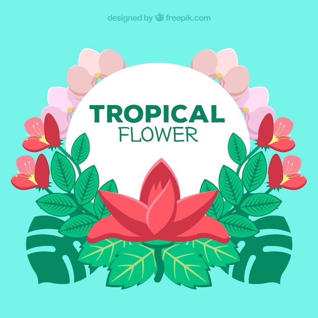 Beautiful tropical flower background