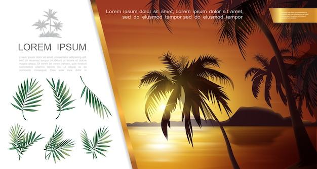 ヤシの木のシルエットの枝と葉のベクトル図と美しい熱帯の自然の風景テンプレート 無料ベクター