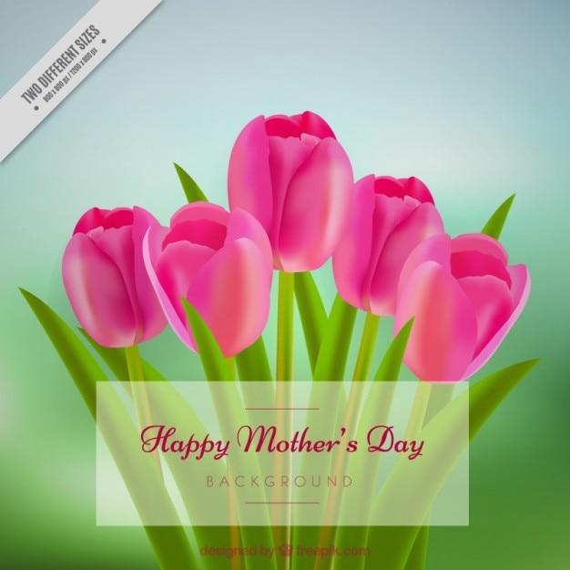 Beautiful tulips for mum background