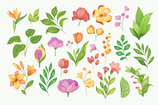 Beautiful vintage hand drawn floral collection Premium Vector