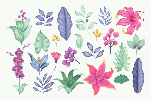 Beautiful vintage hand drawn floral vector collection Premium Vector