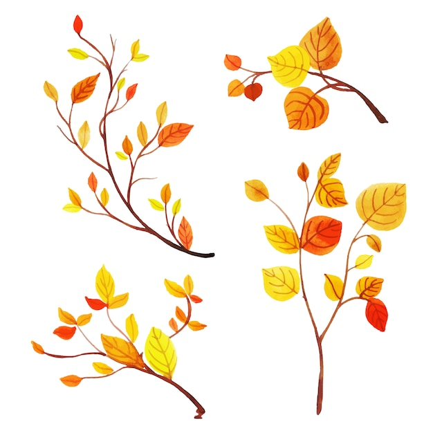 Beautiful watercolor autumn leaves collection Free Vector