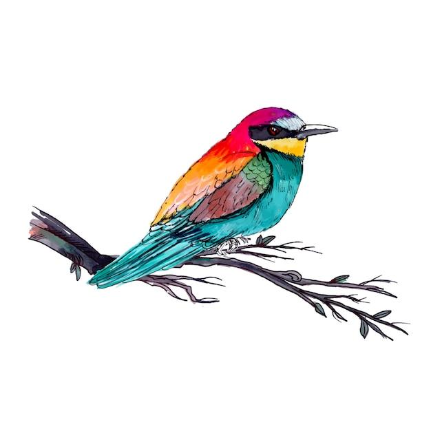 Beautiful watercolor bird Premium Vector