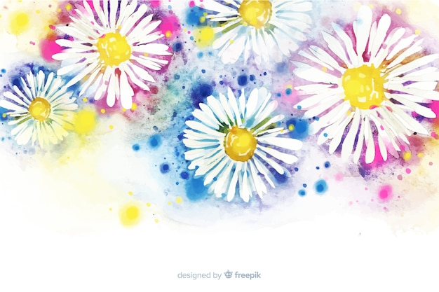 Beautiful watercolor daisy flower background Free Vector