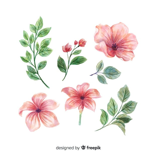 Beautiful watercolor flowers and leaves Free Vector