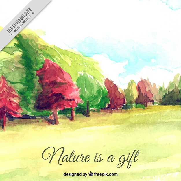 Beautiful watercolor landscape with trees and\ inspiring message