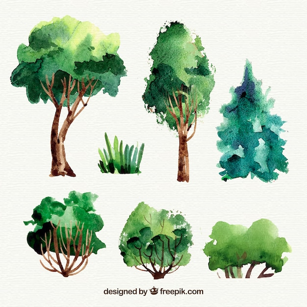 Beautiful watercolor tree collection Free Vector