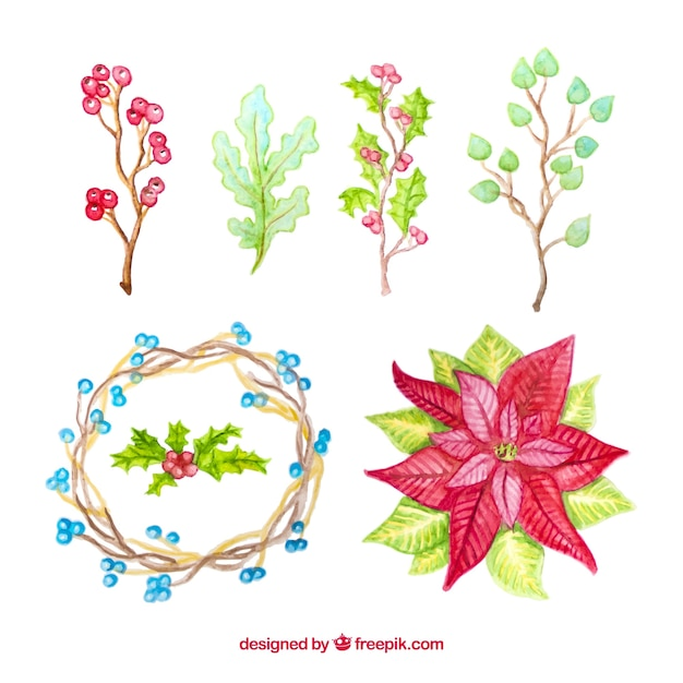 Beautiful watercolour collection of winter\ flowers