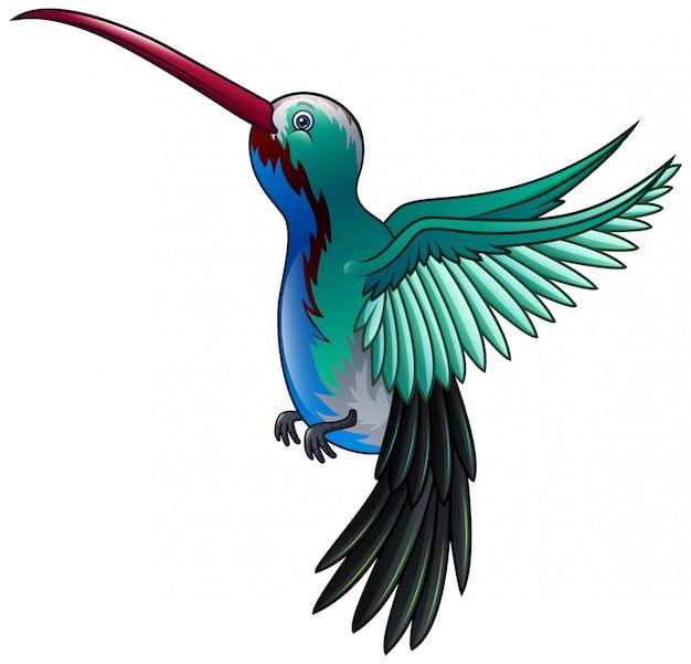 Beautiful a wild hummingbird flying cartoon Premium Vector