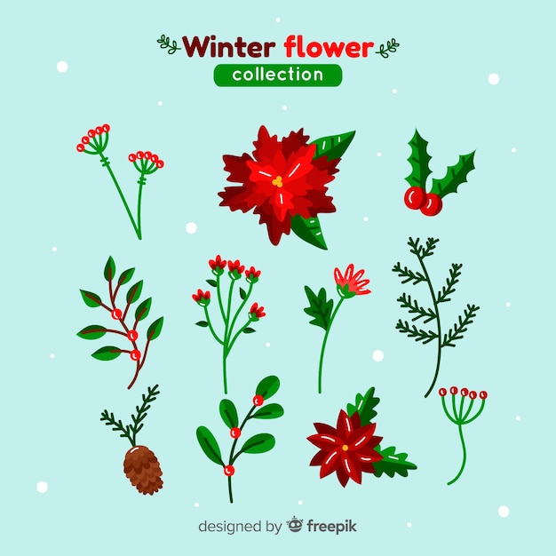 Beautiful winter flower collection Free Vector