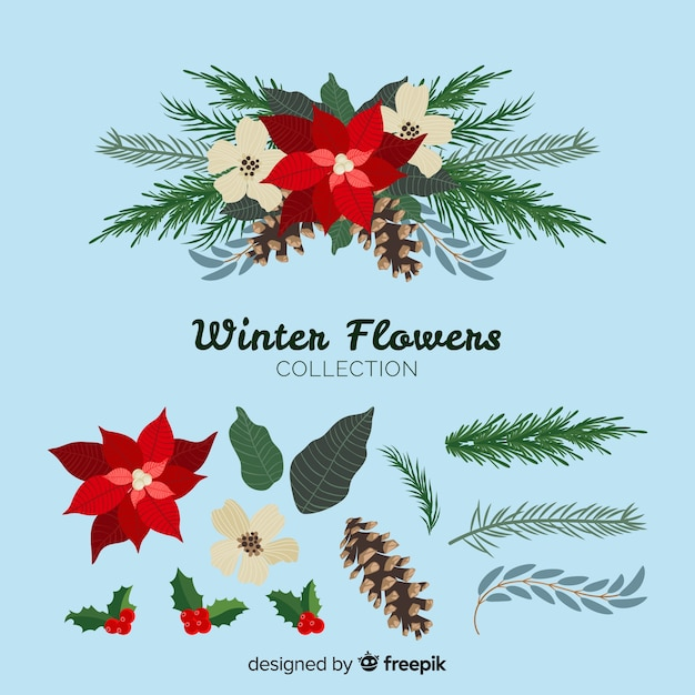 Beautiful winter flowers collection Free Vector