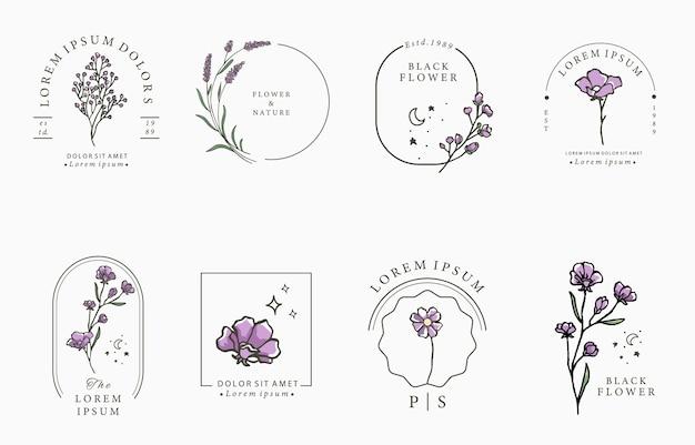 Коллекция красоты лаванды. Premium векторы