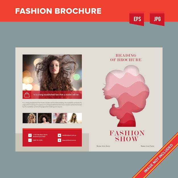 Beauty Salon Brochure Vector  Premium Download