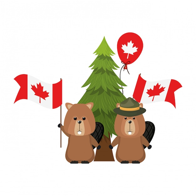 Beaver forest animal of canada Free Vector