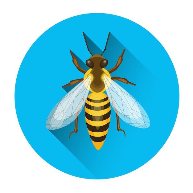 Пчела мед насекомые пасека иконка векторные иллюстрации Premium векторы