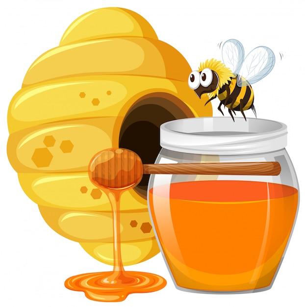 Bee and honey in jar Free Vector