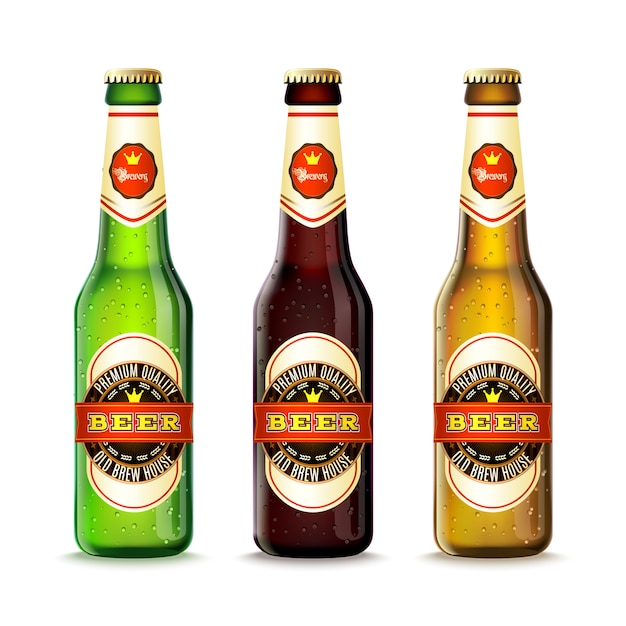 Beer bottles set Free Vector