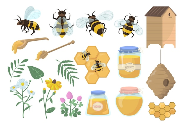 Bees and honey set. flowers, beehive and honeycombs, jar, pot and dipper isolated on white background. Free Vector