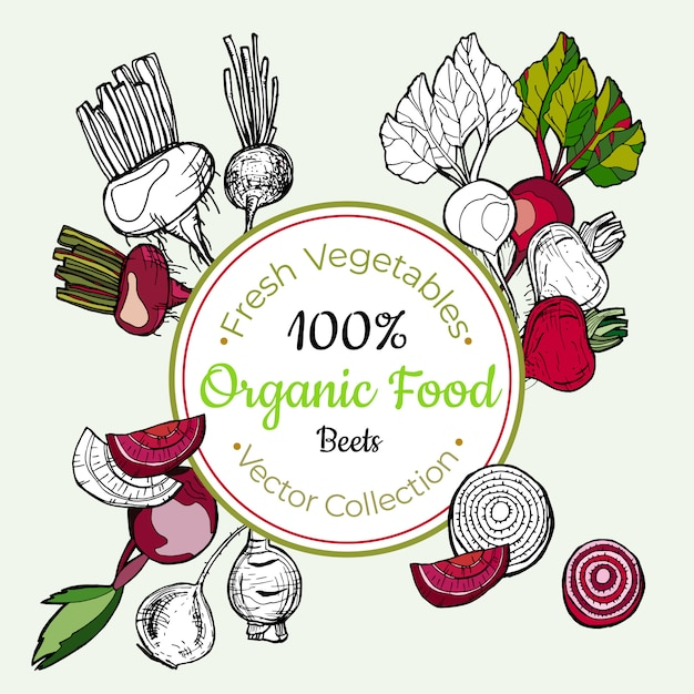Beets vegetable groceries vintage label Premium Vector