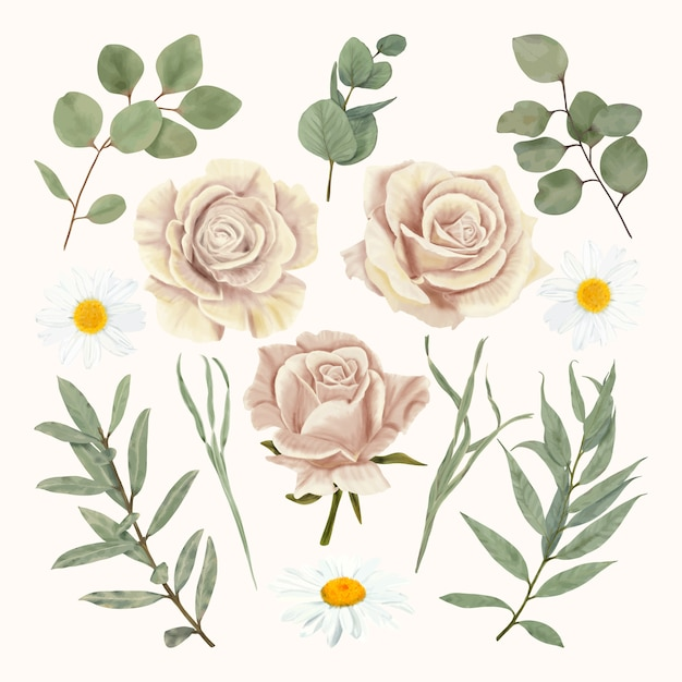 Beige roses with daisy and eucalyptus leaves Premium Vector