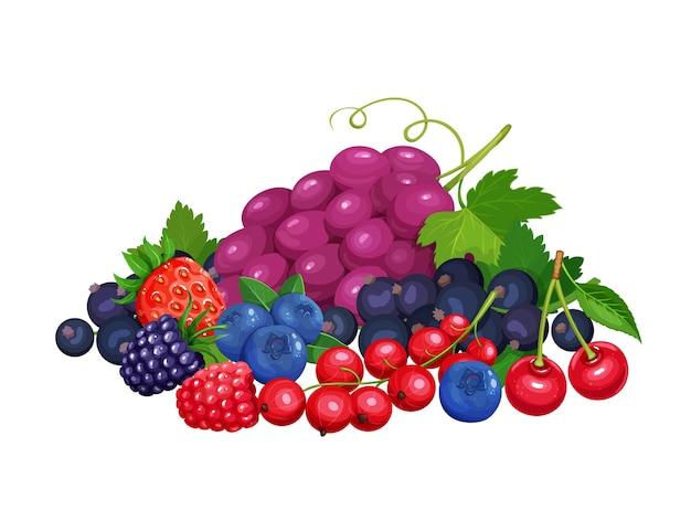 Баннер ягод. вишня, красная смородина, ежевика, черника, клубника, малина и виноград. иллюстрация концепции здорового питания. Premium векторы