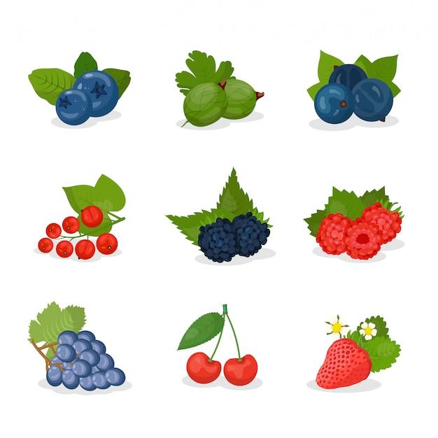 Ягоды, набор фруктов иллюстрации Premium векторы