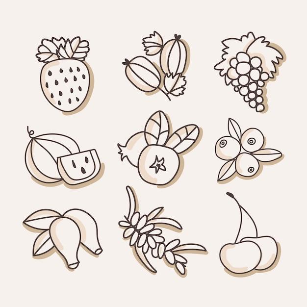 Berries fruit Premium Vector