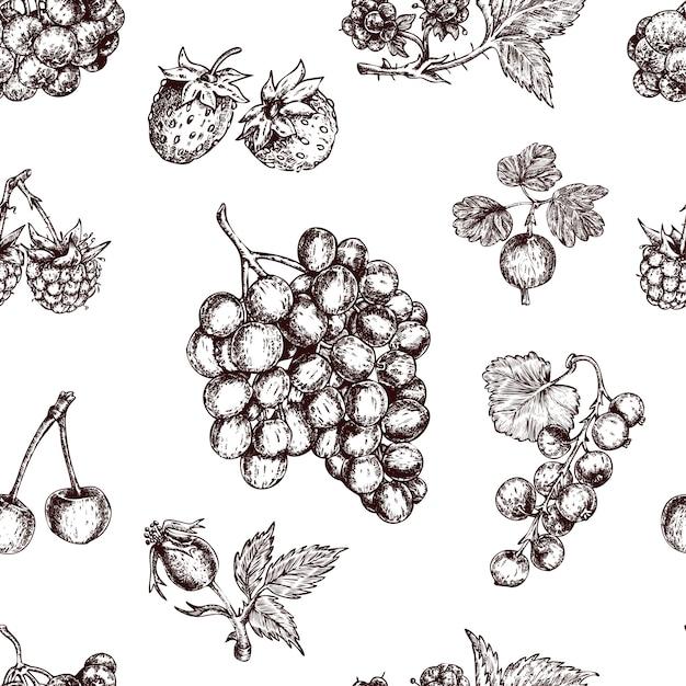 Berries hand drawn seamless pattern Free Vector