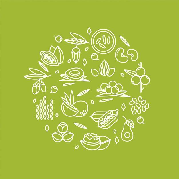 果実、ナッツ、野菜の果物や種子のイラスト Premiumベクター