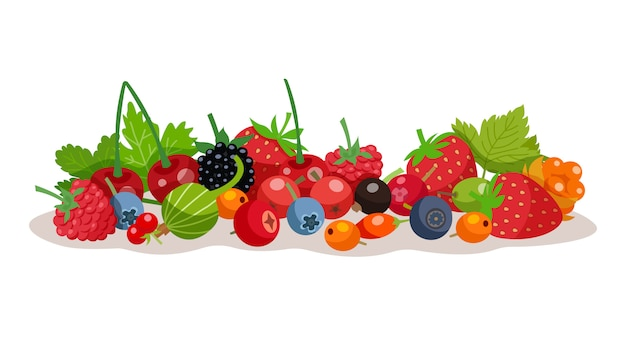 Berries vector illustration Free Vector
