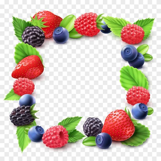 Berry frame transparent illustration Free Vector