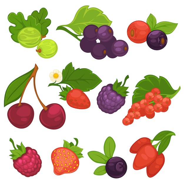 Berry fruits vector isolated flat icons for jam or juice Premium Vector