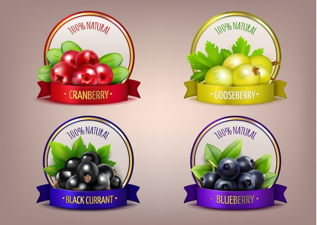 Berry labels realistic eco collection Free Vector