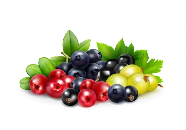 Berry mix realistic concept Free Vector