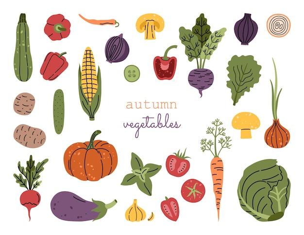 Большой осенний урожай овощей Premium векторы