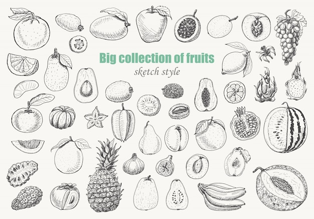 Big collection of fruits Premium Vector