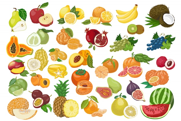 Big collection of isolated fruits Premium Vector