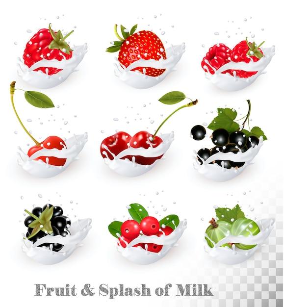 ミルクスプラッシュのフルーツとベリーの大きなコレクション。ラズベリー、ブラックベリー、ストロベリー、チェリー、ブラックカラント、ブルーベリー。 Premiumベクター