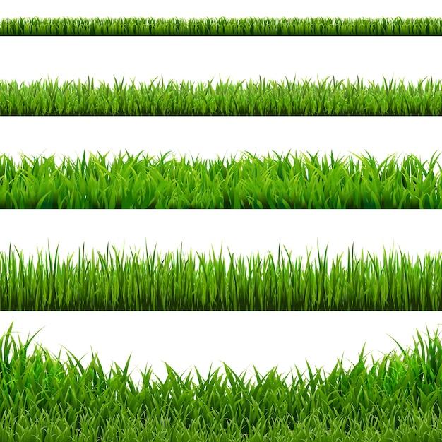 大きな草枠セット、イラスト。 。 Premiumベクター