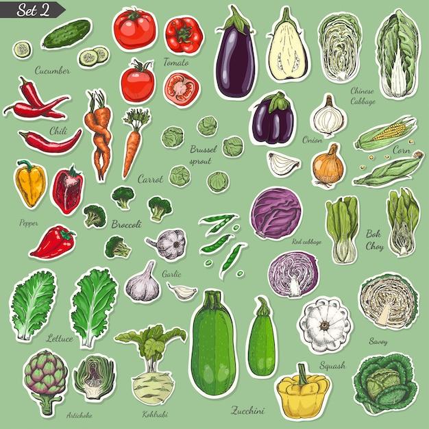 Big set of colored label vegetables Premium Vector