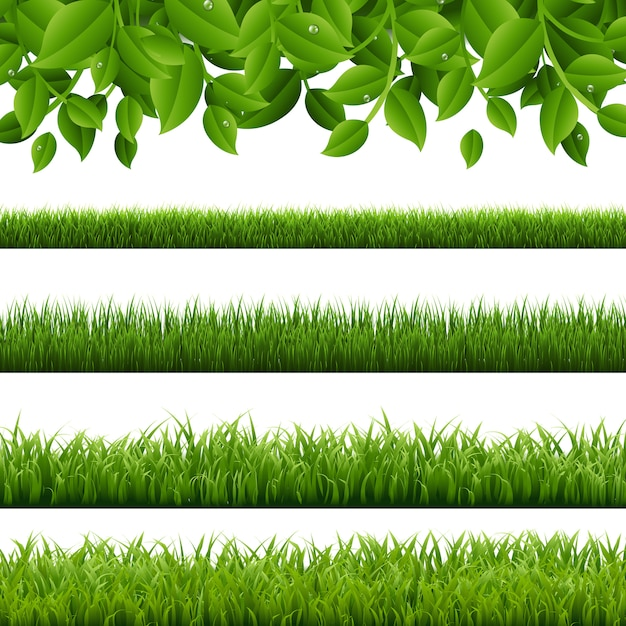 Big set green grass and leaves borders white background Premium Vector